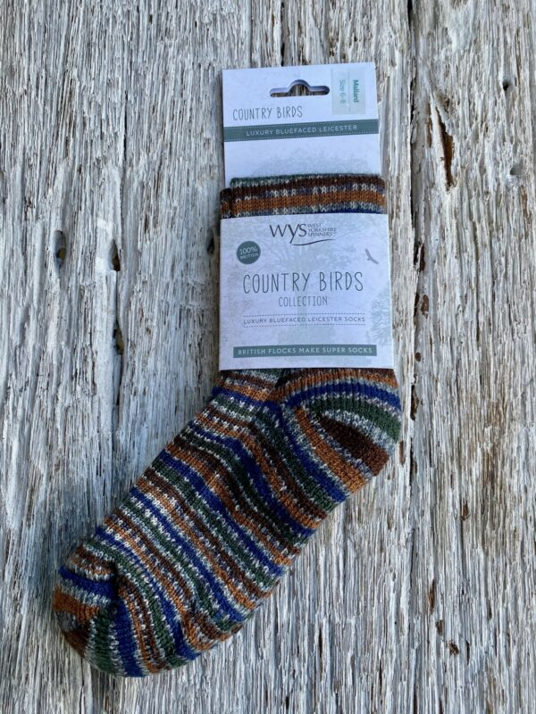 British Wool Striped Socks - Unisex